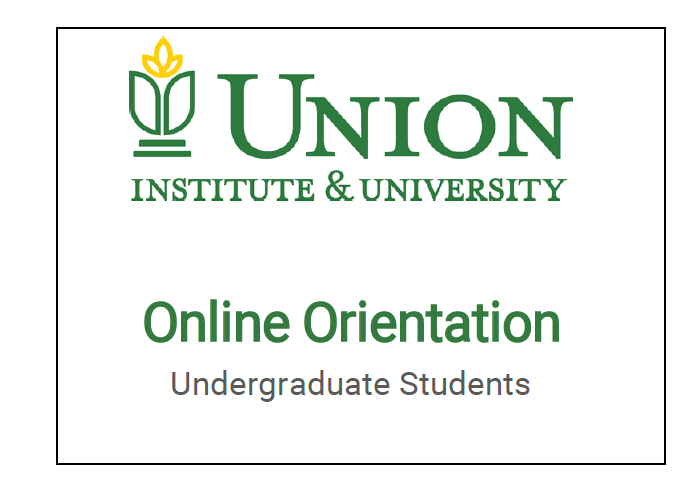 Online Orientation for Undergraduate Students